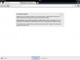 chrome ipad 03 260x195   Recenze Google Chrome pro iOS