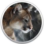 Cougar, nebo Lynx? Hledá se příští kočka pro OS X