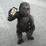 Příští generace telefonů bude odolnější proti pádům díky Gorilla Glass 4